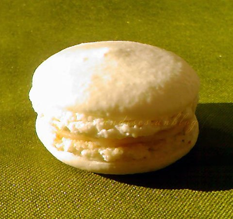 macaronsfleurdoranger.jpg