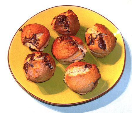 muffinscocochocoadle.jpg